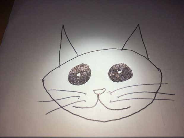 ritade katter steg för steg